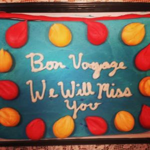 Cake from one of our going away parties